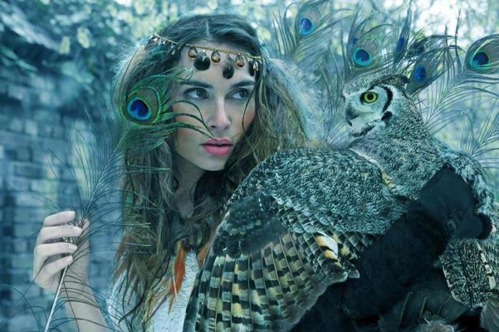 guide spirituel animal