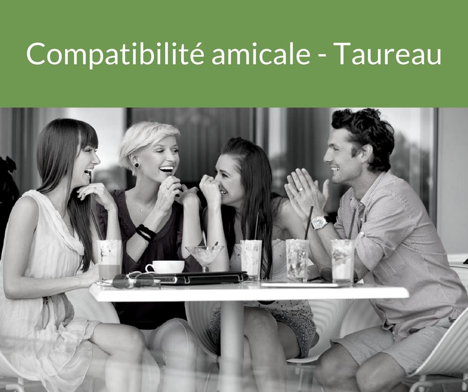 Votre compatibilité amicale - Taureau